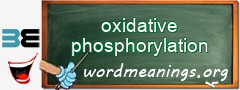 WordMeaning blackboard for oxidative phosphorylation
